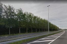 Bomen rooien: deel A73 drie nachten dicht