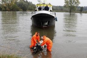 Koe belandt in de Maas bij Sint Agatha: 'Het dier was bekaf'