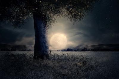 Evenement: Volle maan wandeling, kampvuur en erwtensoep