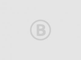 Heemhuus gaat tegen de vlakte in Sint Anthonis: 'Het gemeentehuis heeft een geweldige kelder'